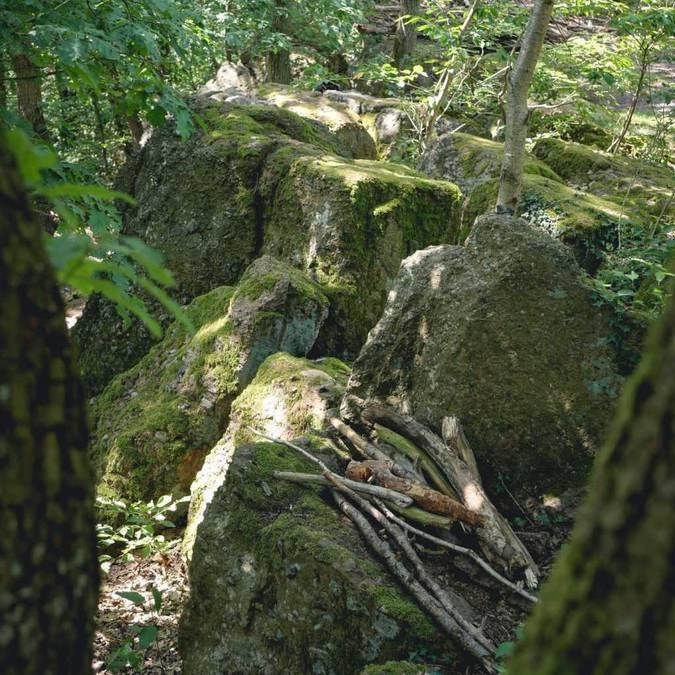 Das Ardennen-Condroz